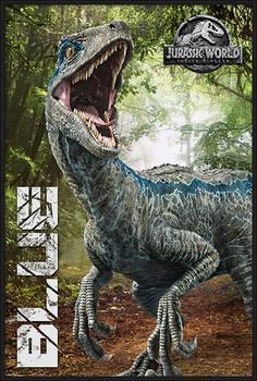 Oprawiony plakat Jurassic World Fallen Kingdom - Blue