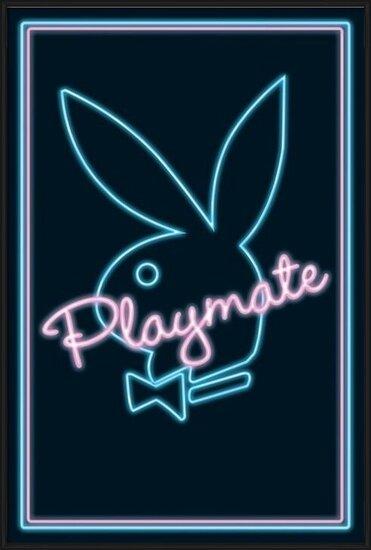 Plakat Playmate - neon