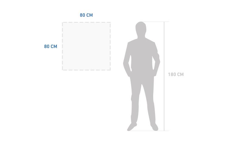 Szklany obraz White Silhouette