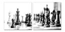 Chess - Black and White World