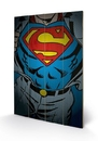 DC Comics - Superman Torso